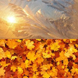 Herbst / Winter / Weihnachtsdüfte